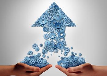 Five Critical Steps in Developing a Peak Performance Culture