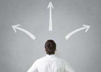 Critical Choices: Lead, Follow, or Wallow