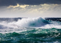 Organization culture during turbulent times