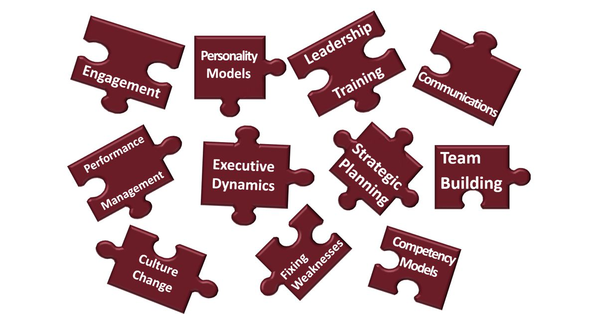 leadership development culture puzzle